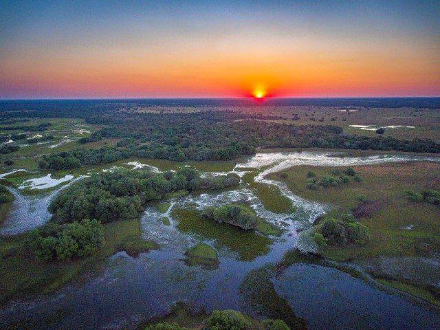 Pantanal landscape. Credit Cristian Dimitrius