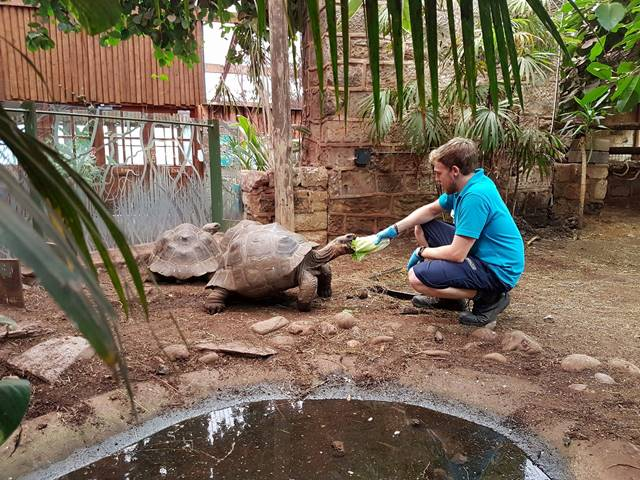 As the Reptile Intern, Jonathan also trained as a zookeeper within the Lower Vertebrates & Invertebrates Team