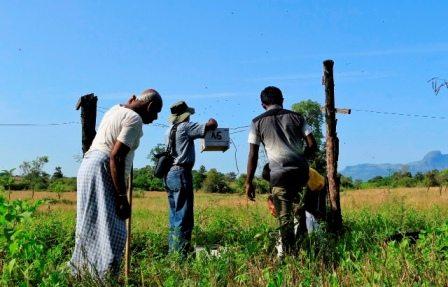 Electric fences in Sri Lanka to help deter elephants
