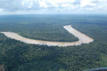 Birds eye view of the Kinabatangan river in Malaysian Borneo