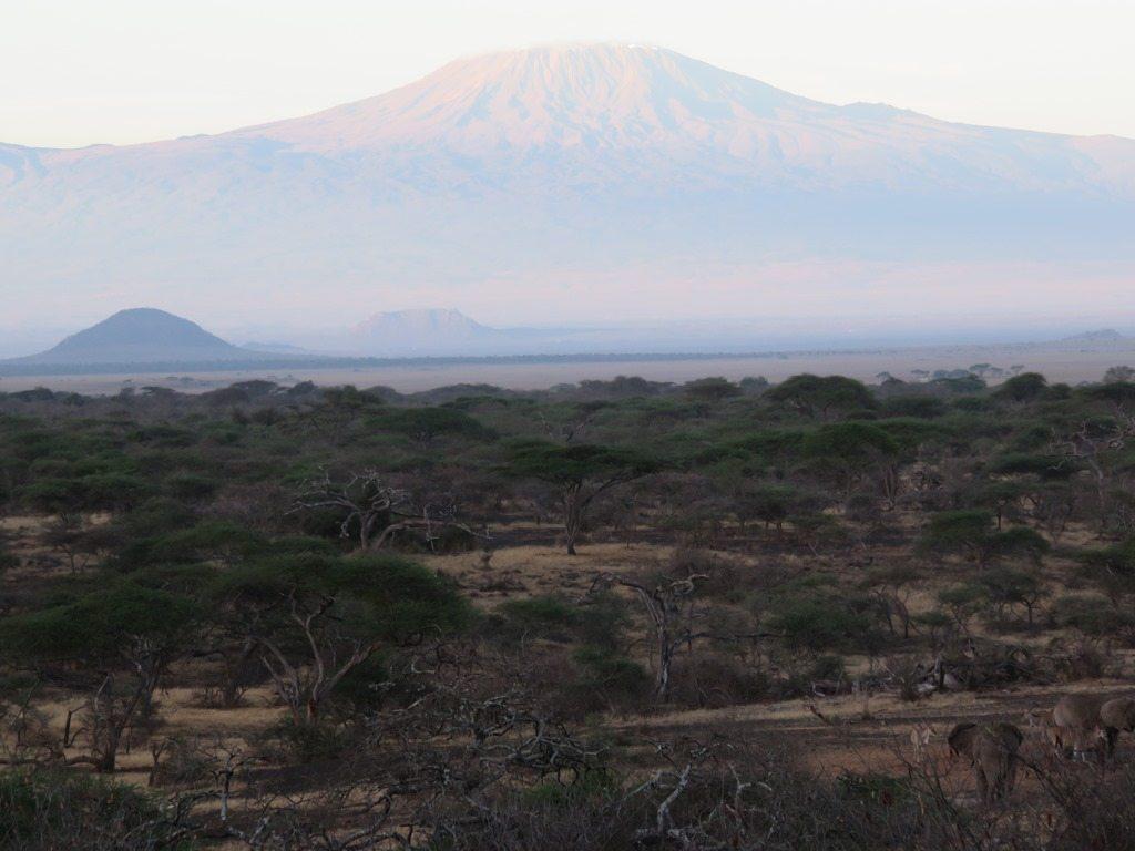 Landscape shot of Mount Kilimanjaro