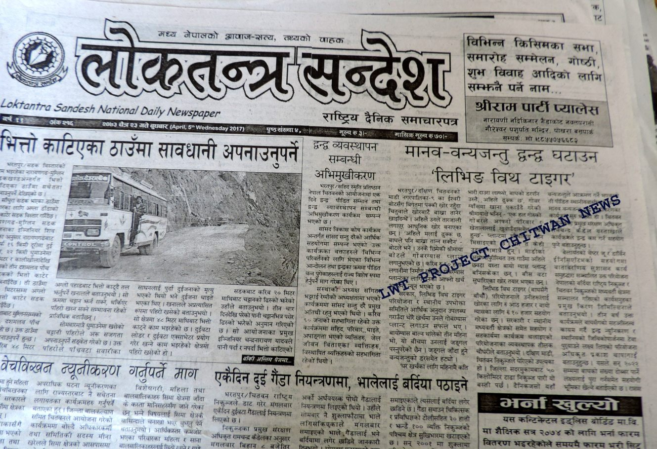 Newspaper article about living with tigers in Nepal newspaper