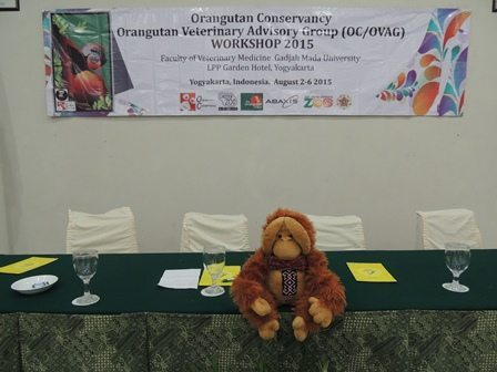 OVAG workshop, mascot