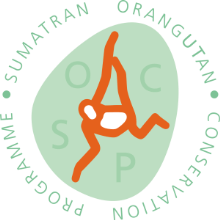Sumatran Orangutan Conservation Programme logo