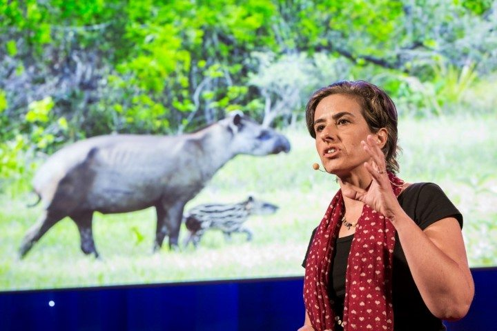 Patricia Medici speaking at TED talk
