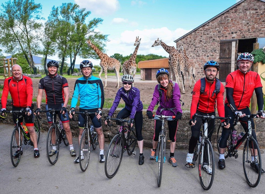 Cycling team in front of giraffes