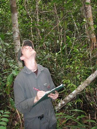David carrying out research in Borneo. Credit: David Ehlers Smith