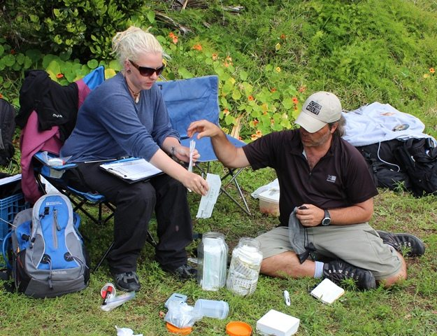 Gerardo and Helena working in the field. Photo credit: Mark Outerbridge