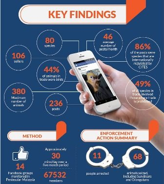 key-finding---infographic-from-traffic-(small)