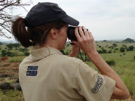 Sarah scanning for giraffe in Kidepo. Photo credit Julian Fennessy, Giraffe Conservation Foundation