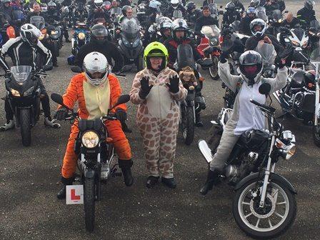 tiger-giraffe-and-ele-bikers-small