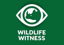 Wildlife witness logo