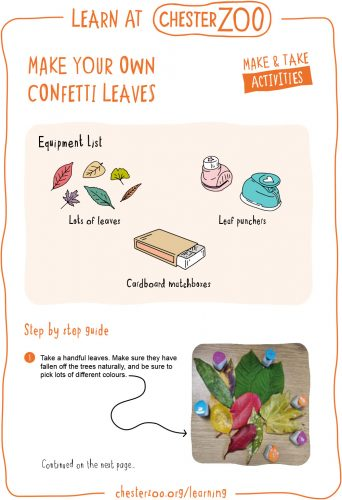Image of the make your own confetti leaves resource, page 1