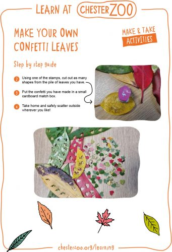 Image of the make your own confetti leaves resource, page 2